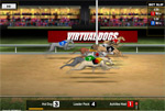 virtual dogs sportweddenschappen